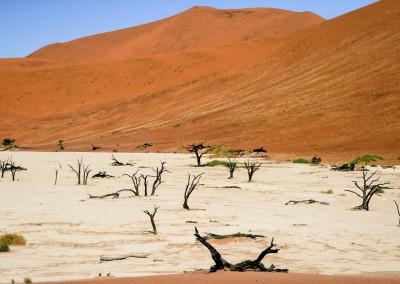 Andrea Mazzella, Deadvlei, Namibia