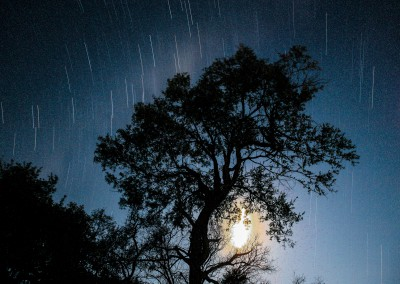 Andrea Mazzella, notte africana, Mozambico