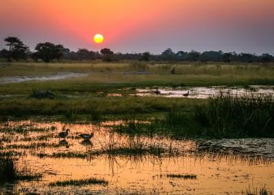 Tramonto sul'Okavango, Botswana